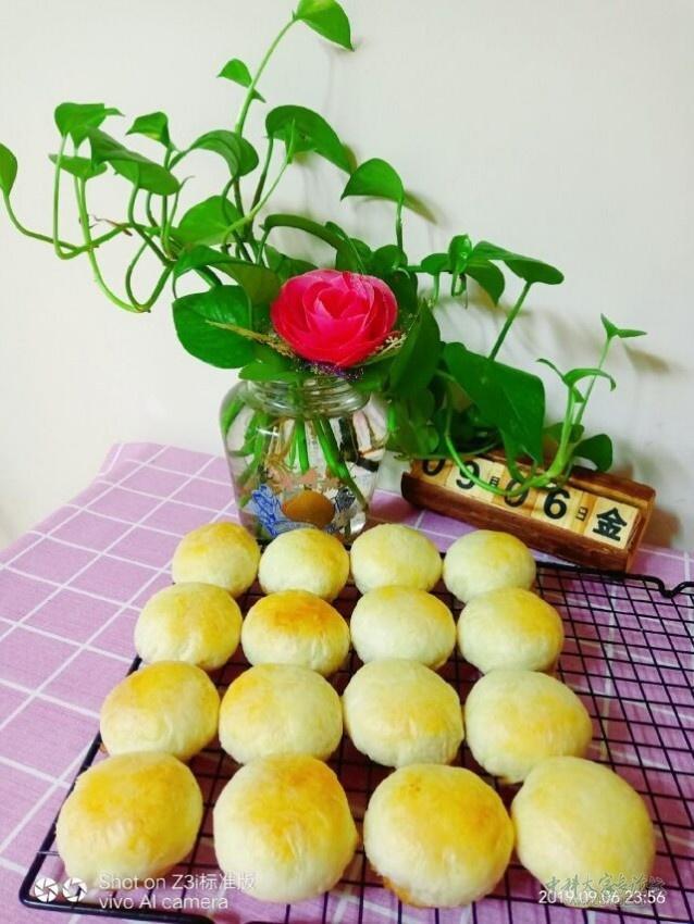 春蕾苏式鲜肉月饼1.jpg